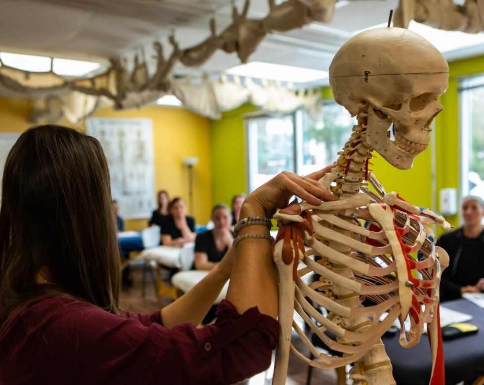 curso de osteopatía recomendado en cadiz san fernando